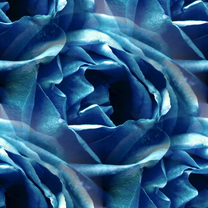 Blue Rose - Seamless Comforters