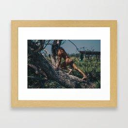 Tree 354 Framed Art Print