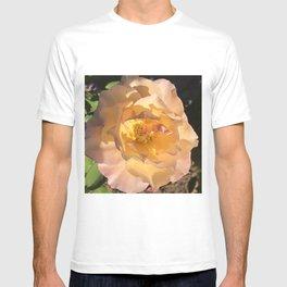 Pastel Yellow-Pink Rose In Dappled Sunlight T-shirt