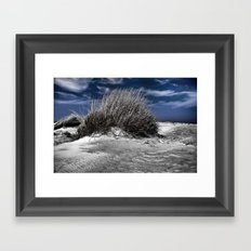 Windblown Framed Art Print