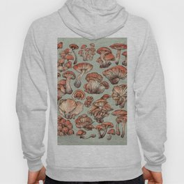 A Series of Mushrooms Hoody