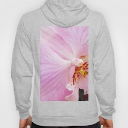 Pastel Orchid Hoody