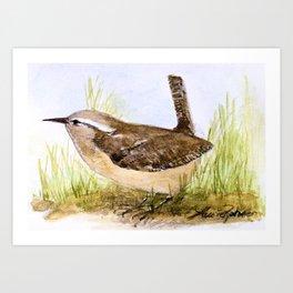 Wren Woodland Bird Nature Art Art Print