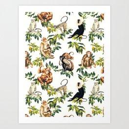 Monkeys, orangutans and more Art Print