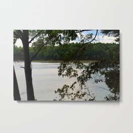 Walden Pond Through the Trees Metal Print