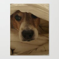 jack russell Canvas Prints featuring Jack Russell by Mel Waldron