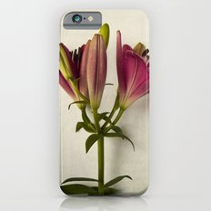 Botanical Lily No. 7719 iPhone 6s Slim Case