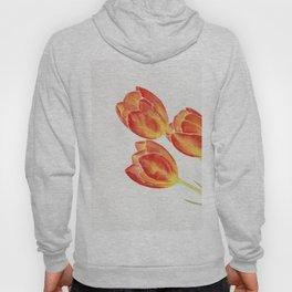 Tulips Watercolor Hoody