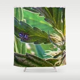 Guardian of the plants Shower Curtain