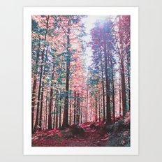Candy forest Art Print