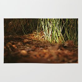 Macro close up forest life spying Rug
