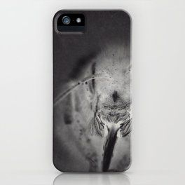 InsectA iPhone Case