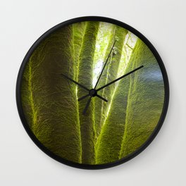 Linden tree trunks, surrounded by humid silent mosses, La Palma island, Spain Wall Clock