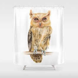 Owl Watercolour Print | Philippine Scops Owl Shower Curtain