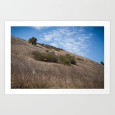 A Field Summer Art Print