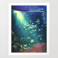 Do You Sea What I Sea Art Print