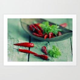 Chili hot Spice abstract Kitchen Still life Art Print