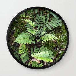Moss and Fern Wall Clock