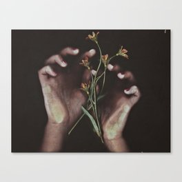 DELICATE HANDS Canvas Print