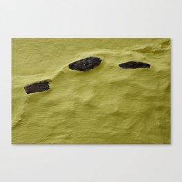 Wall Piece Canvas Print