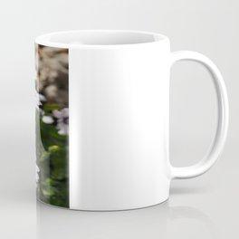 Margherite flovers Coffee Mug