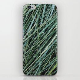 Gibraltar Point VII iPhone Skin