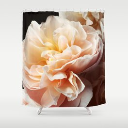 Floribunda #3 - Modern Floral Photograph Shower Curtain
