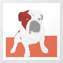 Bull dog Art Print