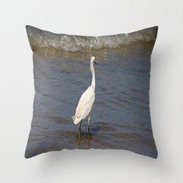 Seaside Scrutiny Throw Pillow