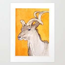 Greater kudu Art Print