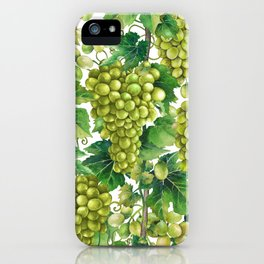 Watercolor bunches of white grapes hanging on the branch iPhone Case