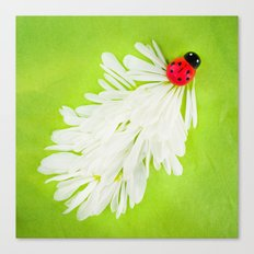 Ladybug Trail Canvas Print