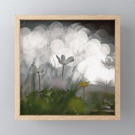reflexion Framed Mini Art Print