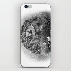 Hedgehog iPhone & iPod Skin