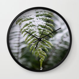 Fern Forest Winter Pacific Northwest Snow II - Nature Photography Wall Clock