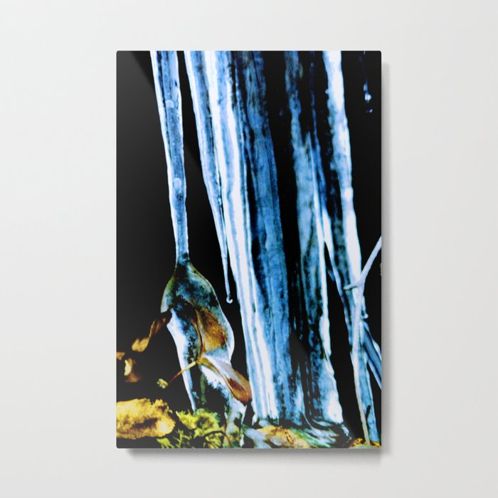 Iced in the northern boreal forest Metal Print