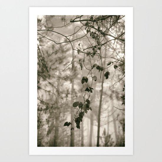 """Into the woods VI""  Art Print"