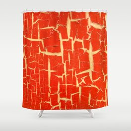 Chinese Paint Shower Curtain