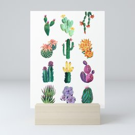 Collection of cacti and succulents Mini Art Print