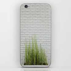 Green on White iPhone & iPod Skin
