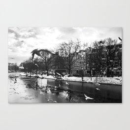 Amsterdam gulls Canvas Print