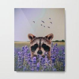 Racoon with lavender Metal Print
