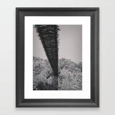 Monkey Sanctuary - Underside of bridge Framed Art Print