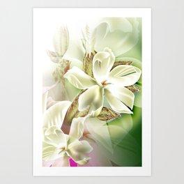 Dreamy White Flowers Art Print