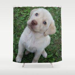 Cutie Pie yellow Lab puppy Shower Curtain