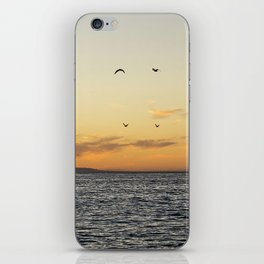 Malibu VIII iPhone Skin