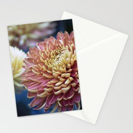 Longwood Gardens Autumn Series 278 Stationery Cards