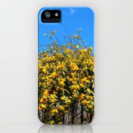 Cat's Claw Vine Over Fence iPhone Case