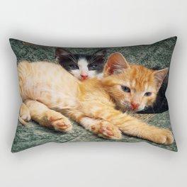 double laziness Rectangular Pillow