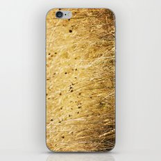 Fields of gold iPhone & iPod Skin